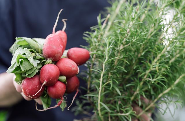 Gesunde und leichte Kost im Streklhof